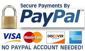 Paypal Instructions Logo
